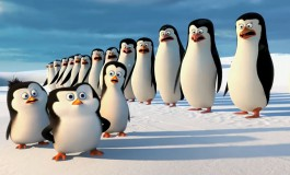 Pinguine aus Madagascar - Bildquelle YouTube Video