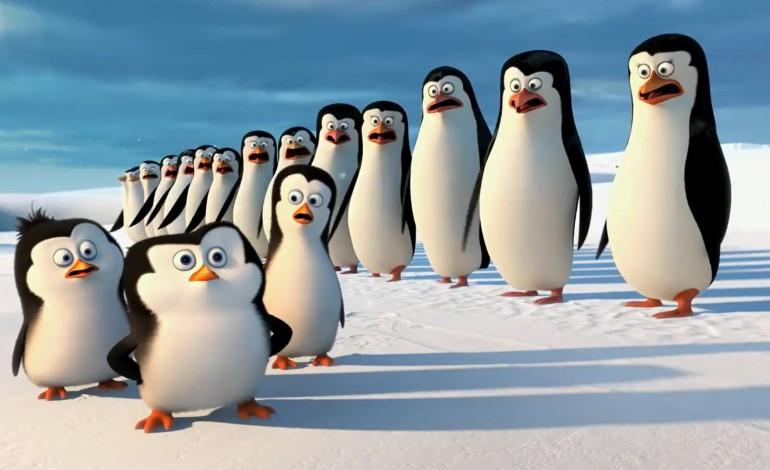 Pinguine aus Madagascar: Trailer zum neuen Kinofilm