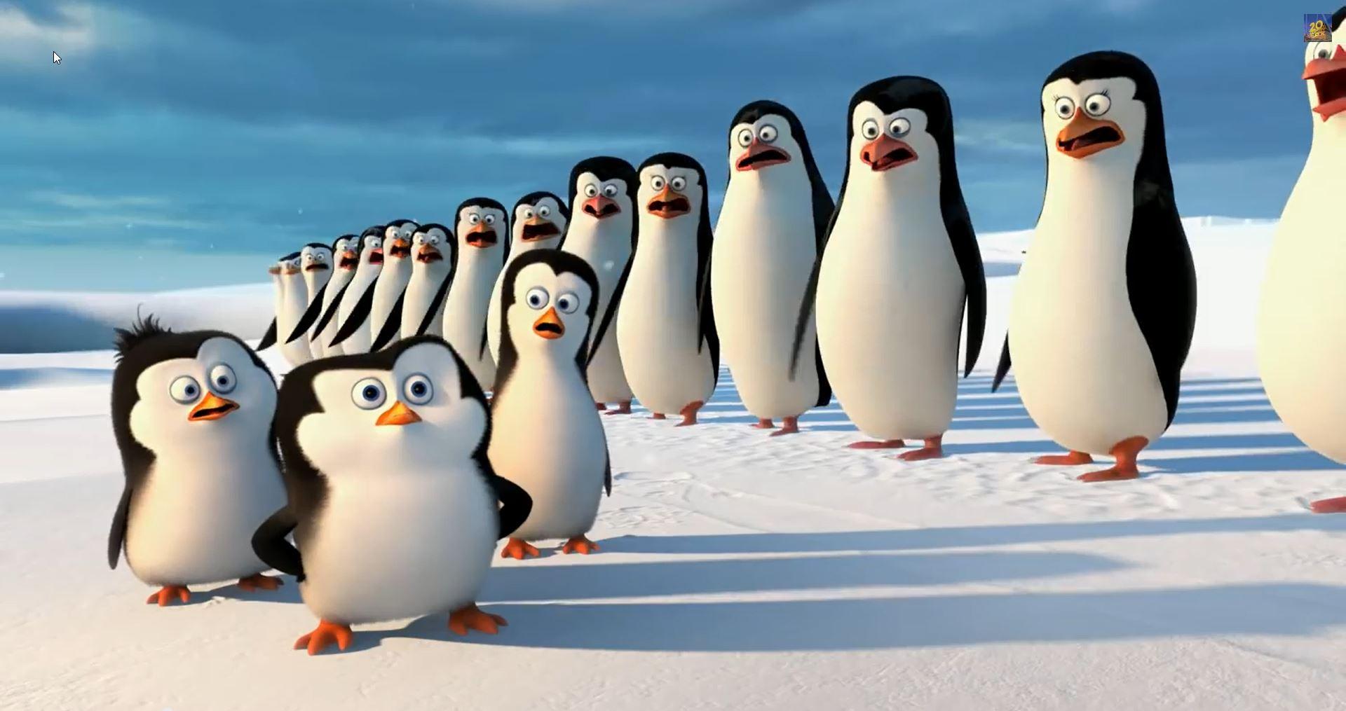 Pinguine aus Madagascar - Bildquelle YouTube Video