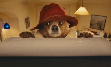 Paddington - Der Bär erobert die Kinoleinwand