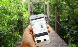 Google: Mobiles Webdesign wird zum Rankingfaktor
